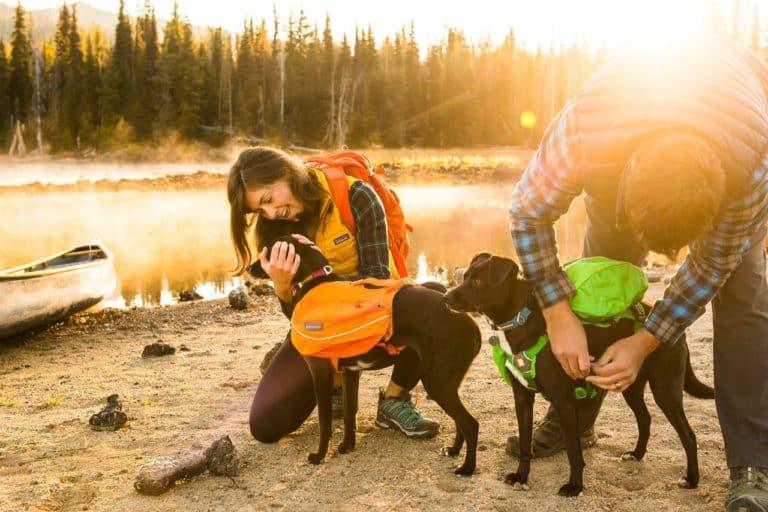 klövjeväskar för hundar