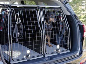 Bilbur för hund
